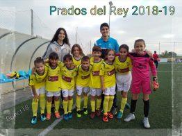 Prados del Rey